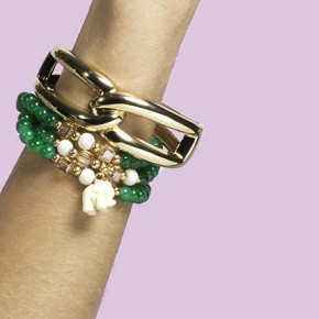 The Bracelet: The Elephant Charms